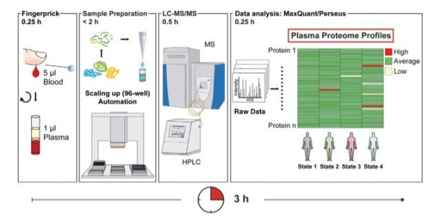 Plasma proteome workflow